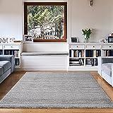 VIMODA Alfombra Moderna de Pelo Corto, Jaspeada, Material Certificado según Oeko Tex, de Color sólido, fácil de cuidar en Gris, Maße:120 x 170 cm