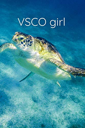 VSCO girl: Notebook: 120 pages perfect for all true VSCO girls
