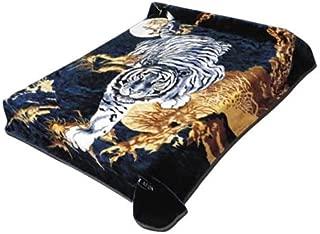 korean tiger and dragon