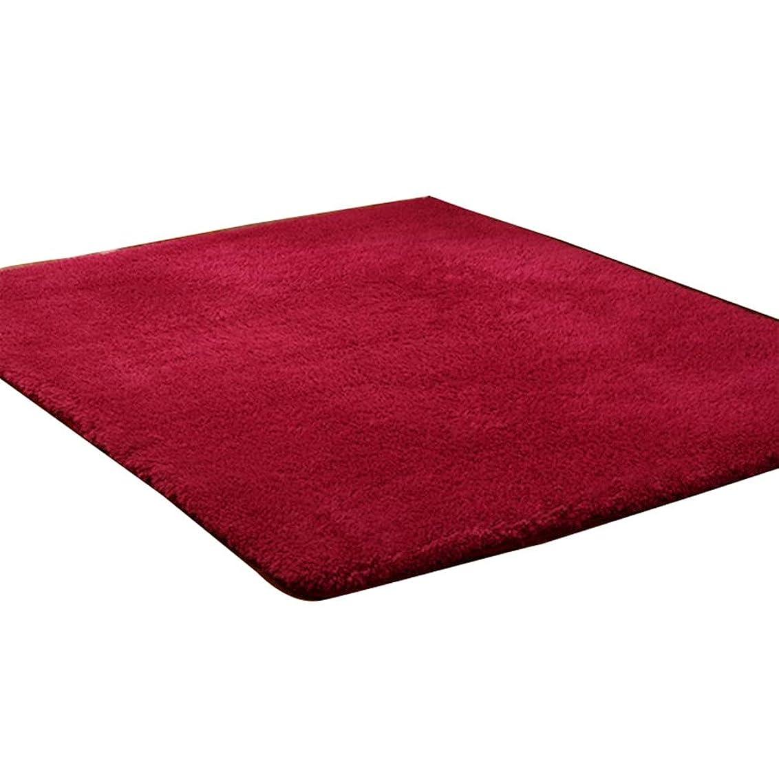 ラグマット 200cm×200cm 正方形 マイクロファイバー 160cm×200cm 長方形 厚手 100*200CM カーペット ホットカーペット対応 シャギーラグ 洗える 滑り止め付 絨毯 レッド 軽量 冬 カーペット オールシーズン 絨毯 秋冬 床暖房