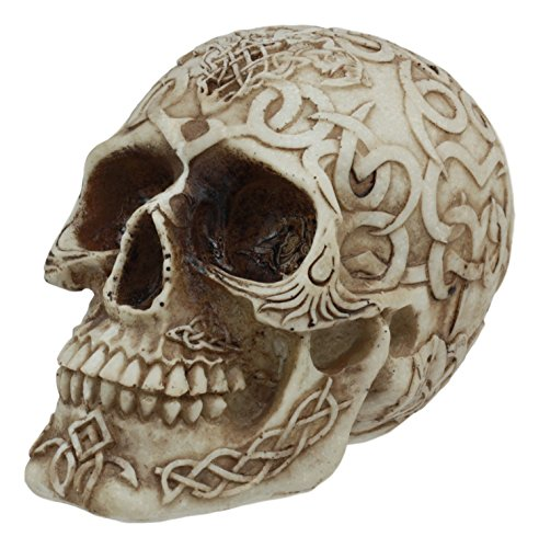 Gifts & Decors Ebros Celtic Astrology Tribal Knotwork Tattoo Relic Skull Statue 6.25' Long Skeleton Cranium Ossuary Collectible Figurine