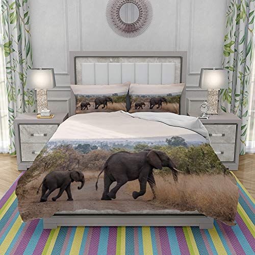 VICCHYY Duvet Cover Set-Bedding,African Bush Elephant In Kruger National Park South Africa,Quilt Cover Bedlinen-Microfibre 140x200cm with 2 Pillowcase 50x80cm