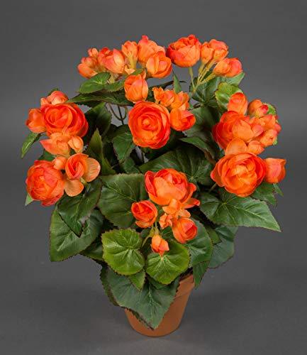 Seidenblumen Roß Begonie 38cm orange im Topf LM Kunstpflanzen Kunstblumen künstliche Blumen Pflanzen Begonienbusch