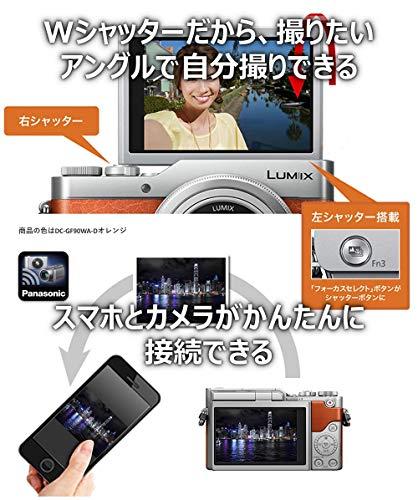 Panasonic(パナソニック)『LUMIX(DC-GF10/GF90)』
