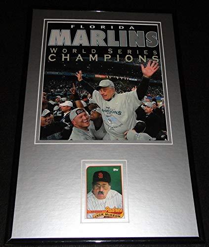 Hanley Ramirez Florida Marlins MLB Framed 8x10 Photograph 2009 Batting