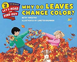 Book about fall leaves