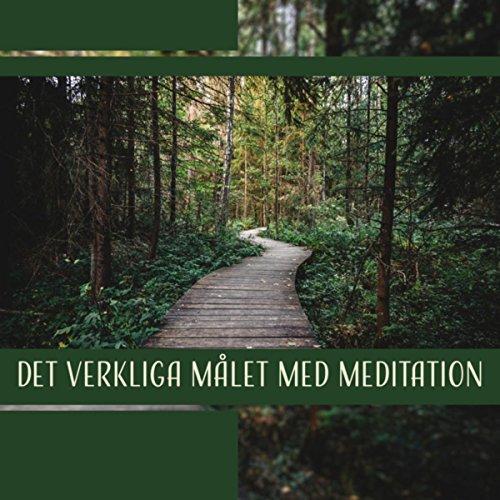 Det verkliga målet med meditation