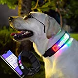 Dog LED Collar, Digital Interactive Programmable Bluetooth Scrolling Light Up Reflective Illuminated for Safety, USB Rechargeable with Water Resistant Flashing Light