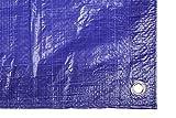 Toldo reforzado gramaje 90 grs, 5 x 8 m, color azul -...