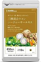 シードコムス ウコン サプリメント 約3ヶ月分 810粒 健康 ガジュツ 秋ウコン 春ウコン シークヮサー クルクミン