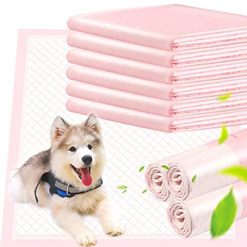 ACE2ACE Trainingspads für Hunde Welpen Verdickung, Ultra Saugfähige Hygieneunterlagen für Haustiere, Unverzichtbar für Reisen und im Auto, 10 Stück mit Tragbarer Tasche, Leicht zu Tragen