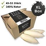 Haustier-Küche - Sepiaschalen XL Box - Unidades 8-12 cm de tamaño - Calcio, Comida, Comida para Reptiles - Accesorios de Tortuga - Sepia Cuenco para Bartagame