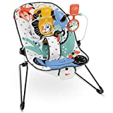 Fisher Price Signature Style Baby's Bouncer