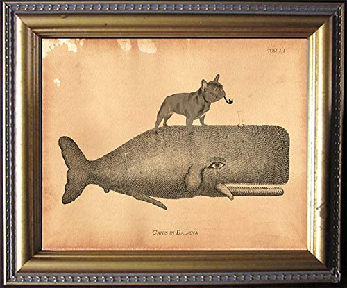 Black French Bulldog Dog Riding Whale Vintage Collage Print Tea Stained dog art dog gift for dog mom gift for her dog novelty gift wall decor matte art print