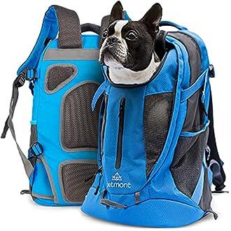 Hunderucksack Bild
