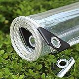 Lona Impermeable PVC Transparente con Ojal,Cubierta de Hoja de Pérgola Resistente Al Polvo Antiedad para Trabajo Pesado,Toldos para Plantas de Invernadero Al Aire Libre,0.35mm (1x5m/3.2x16.4ft)