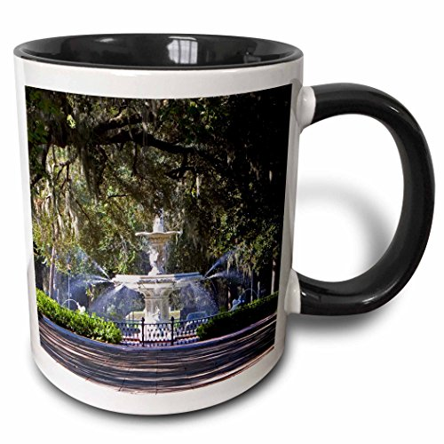3dRose 89316_4 Water Fountain, Forsyth Park, Savannah, Georgia-US11 DFR0070-David R Frazier Two Tone Mug, 11 oz, Black/White