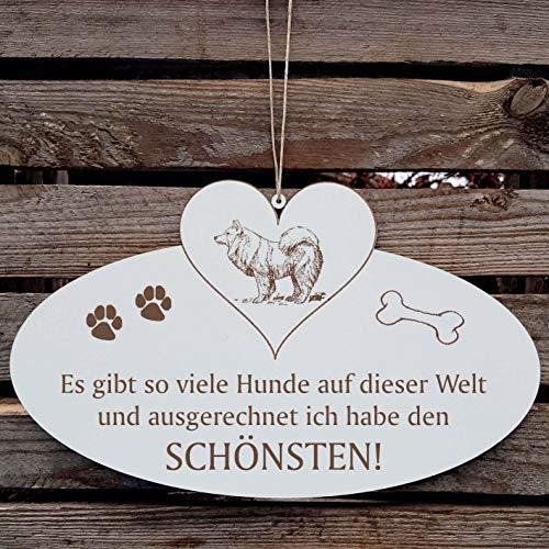 SCHILD Dekoschild mit Herz « Schönster HUND der WELT - SPITZ » ca. 20 x 12 cm - mit Motiv und Spruch - Shabby Vintage Holzschild Türschild - Kleinspitz Großspitz Mittelspitz