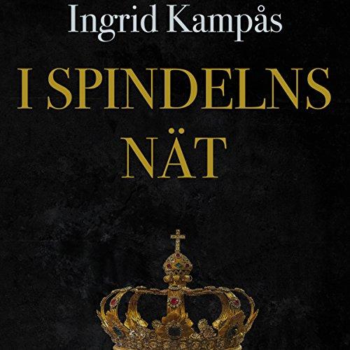 I spindelns nät audiobook cover art