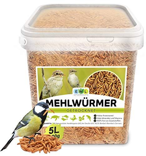 Mehlwürmer getrocknet 800g │5 ltr. Insektensnack für Vögel, Fische, Schildkröten, Nager und Reptilien EWL Naturprodukte