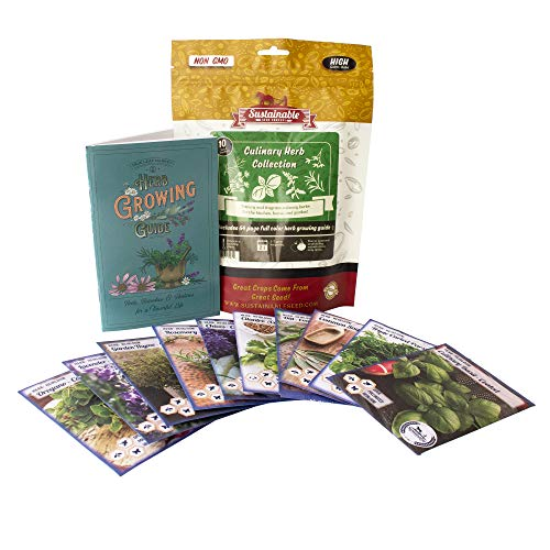 Culinary Herb Seeds Variety Pack - Outdoor & Indoor Herb Garden Kit - 10 Non-GMO Herb Garden Seeds for Planting - Basil Seeds, Cilantro Seeds, Lavender Seeds, Rosemary Seeds, Thyme Seeds, & More