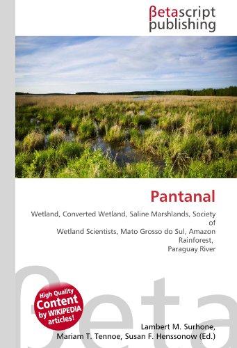 Pantanal: Wetland, Converted Wetland, Saline Marshlands, Society of Wetland Scientists, Mato Grosso do Sul, Amazon Rainforest, Paraguay River