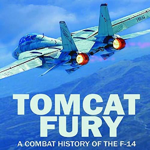 Tomcat Fury cover art
