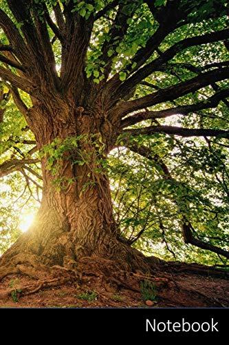 Notebook: Baum, Natur, Holz, Sonnenuntergang Notizbuch / Journal / Tagebuch / Komposition Buch - 6 x 9 Zoll (15,24 x 22,86 cm), 150 Seiten, glänzende Oberfläche.