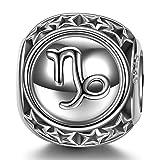 NINAQUEEN Charm per Pandora Charms Capricorno 12 Costellazione Segni Zodiacali Regalo Donna Argento 925 Regali di Compleanno Anniversario per Moglie Ragazza Mamma