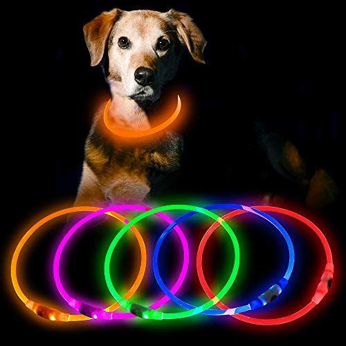 HiGuard LED Dog Collar USB Rechargeable Glowing Pet Collars Lighted Up Safety Necklace Glow in The Dark for You & Your Dogs (Orange)