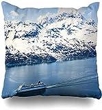 JONINOT Doble Cojines Fundas 18' Bahía Aérea Alaska Naturaleza Parques Agua Glaciar Crucero Mar Funda de Almohada Suave para la Piel