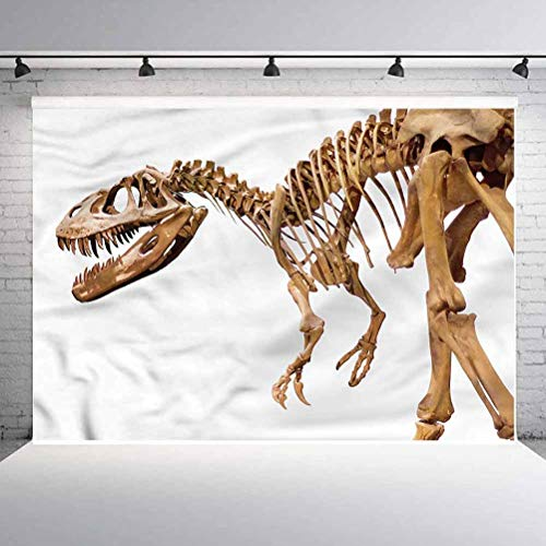 7x7FT Vinyl Photo Backdrops,Dinosaur,Archeology Theme T-Rex Background Newborn Birthday Party Banner Photo Shoot Booth