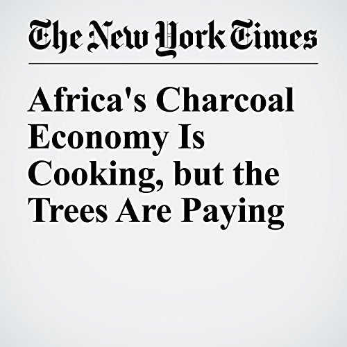 Africa's Charcoal Economy Is Cooking, but the Trees Are Paying cover art