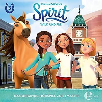 Folge 3: Ein Pferd für Turo / Überraschung! (Das Original-Hörspiel zur TV-Serie)