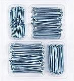 Coceca Hardware Nail Assortment Kit 200pcs, Galvanized Nails, 4 Size Assortment...