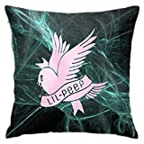 Lil-Peep Rapper Crybaby Bird Pillow Covers Square Housewarming Gifts for Sofa Couch Bedroom Car Home Decorations 18x18 in