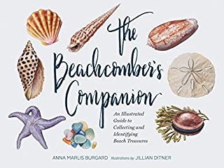 gifts for seashell lovers