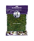 SuperMoss (22420) InstantGreen Moss Mat, Fresh Green, 18 x 16''