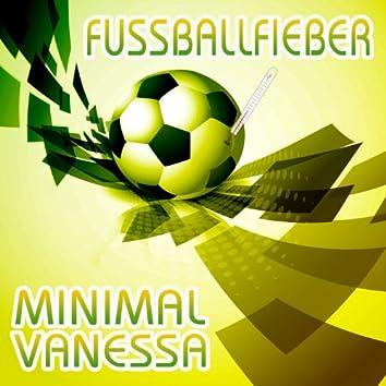 Fussballfieber (Brazil 2014 Mischung)