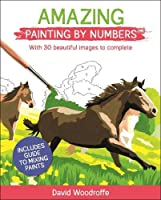 Amazing Painting by Numbers: With 30 Beautiful Images to Complete. Includes Guide to Mixing Paints (Arcturus Painting by Numbers)