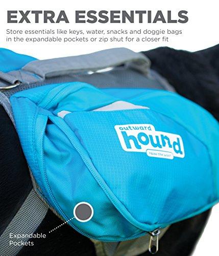 Outward Hound DayPak Dog Backpack, Blue