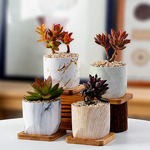 ARTKETTY 7.6CM Succulent Planter Pots, Mini Marble Cactus Plant Pots with Bamboo Tray for Indoor Plants, Round Ceramic Flower Planter Container with Drainage Hole, Set of 4