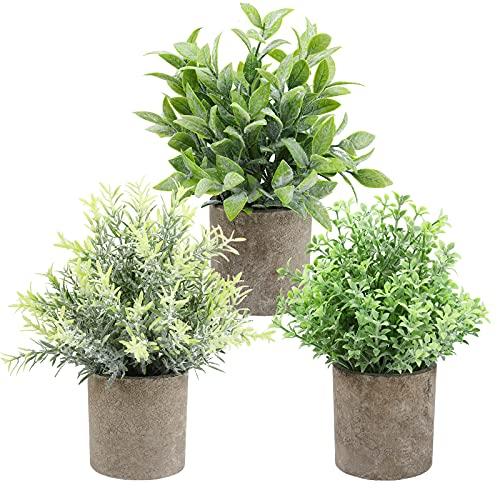 THE BLOOM TIMES Set di 3 piccole piante artificiali in vaso per la decorazione domestica per interni, mini piante finte in vaso finte per la fattoria, bagno, scrivania, scaffale da tavolo