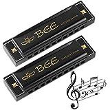 Harmonica, Harmonica Enfant, 2 Pièces Harmonica 10 Trous Harpe Diatonique -Harmonica Chromatique Orgue à Bouche pour Débutants, Étudiants, Adultes, Joueurs Professionnels -Meilleur Cadeau