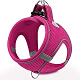 Joytale Step in Dog Harness,12 Colors,Breathable Mesh Vest Harness,Reflective Soft Padded Harnesses for Extra Small and Small Dogs,HotPink,S