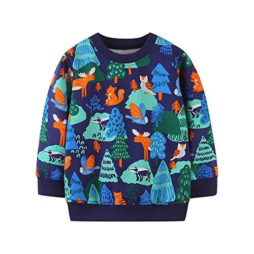 TOKYMOON Jungen Sweatshirt Pullover Baumwolle T-Shirt Kinder Langarmshirts Dinosaurier Kinder Sweatshirt Weihnachtspullover Warme Top Sweat Streetwear Oberbekleidung Tier 98