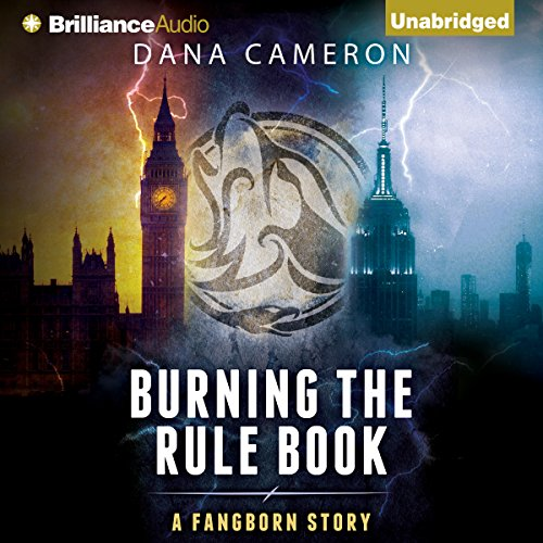Burning the Rule Book audiobook cover art
