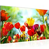 Bild Blumen Tulpen Modern Wandbilder - 100% Made In Germany