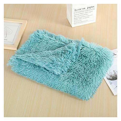 LRHYG Dog Blanket Pet Blanket Soft Dog Mat Blanket Fluffy Long Plush Pet Puppy Cat Bed Mattress For Small Medium Dogs Cats Warm Sleeping Cover Dog Supplies (Color : Green-78x54cm)