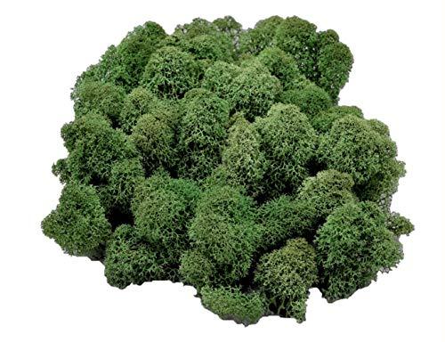 Muwse Island-moos-köpfe V 50g Tannen-grün 2-Fach Hand-gereinigt, präpariert, gefärbt. Extra sauber, weich, trocken, voluminös, bis handteller-große Moos-Flocken. Deko Floristik Basteln Modellbau